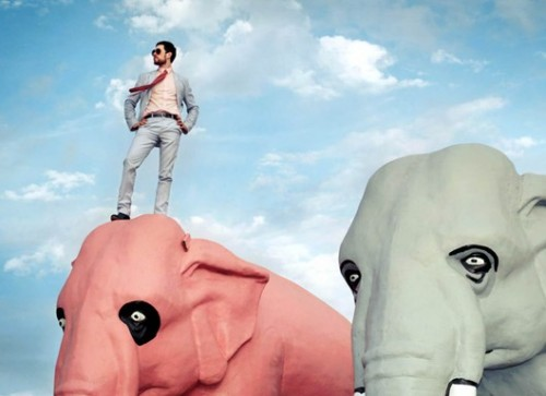foto-elefante