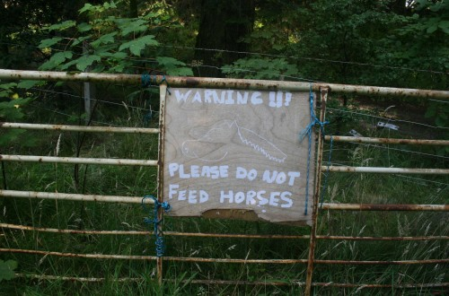 Don't feed (Scotland)