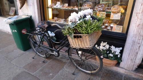 Gardening Bike (Bassano del Grappa)