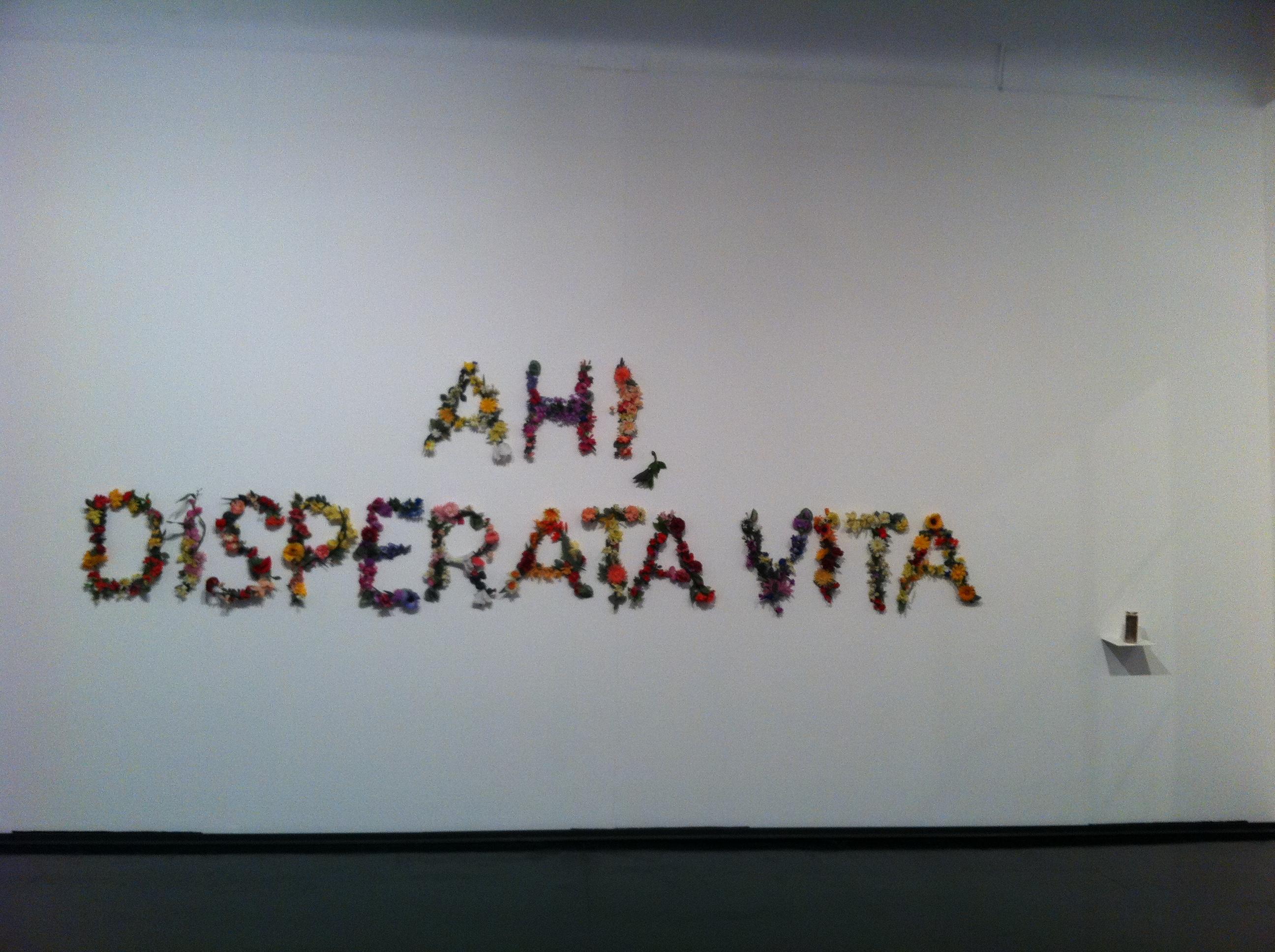Ah! Disperata Vita (Venice)