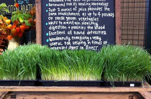 Wheat grass (London)