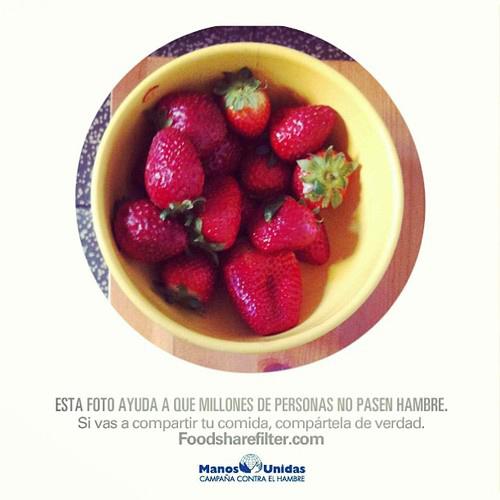 FoodShareFilter 4