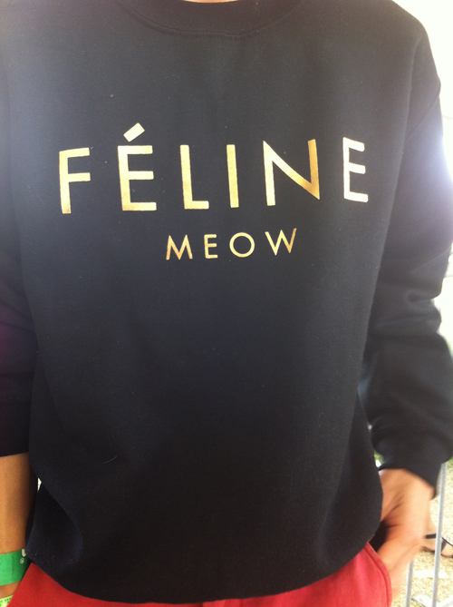 Meow (Coachella)