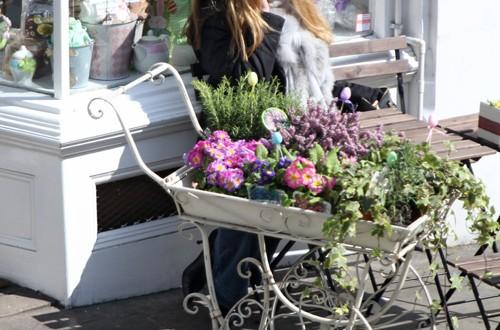 Rodeada de flores (London)