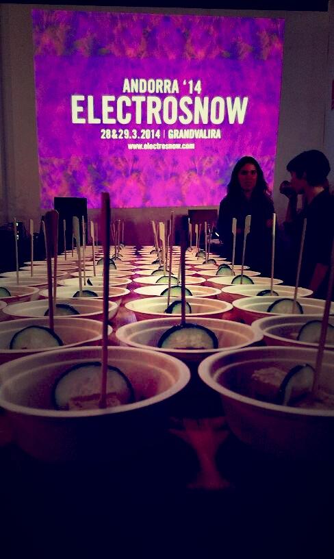 electrsnow1
