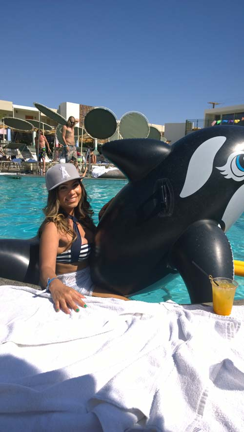 La orca Willy (Coachella)