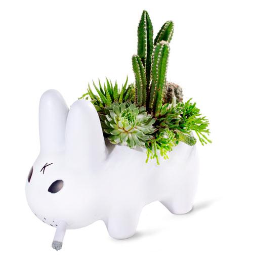 PlantTheFuture_8446__87021.1325014326.600.600