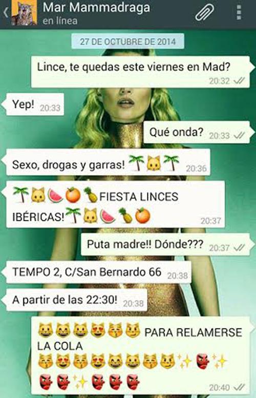 Fiesta Linces Ibéricas en Tempo 2