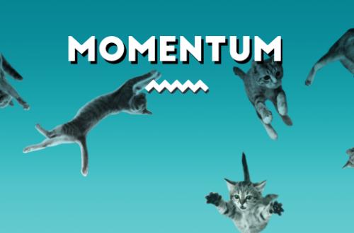Una batalla de gatos en instagram, Cat Wars