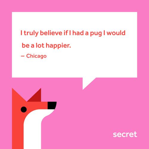 secret app 2