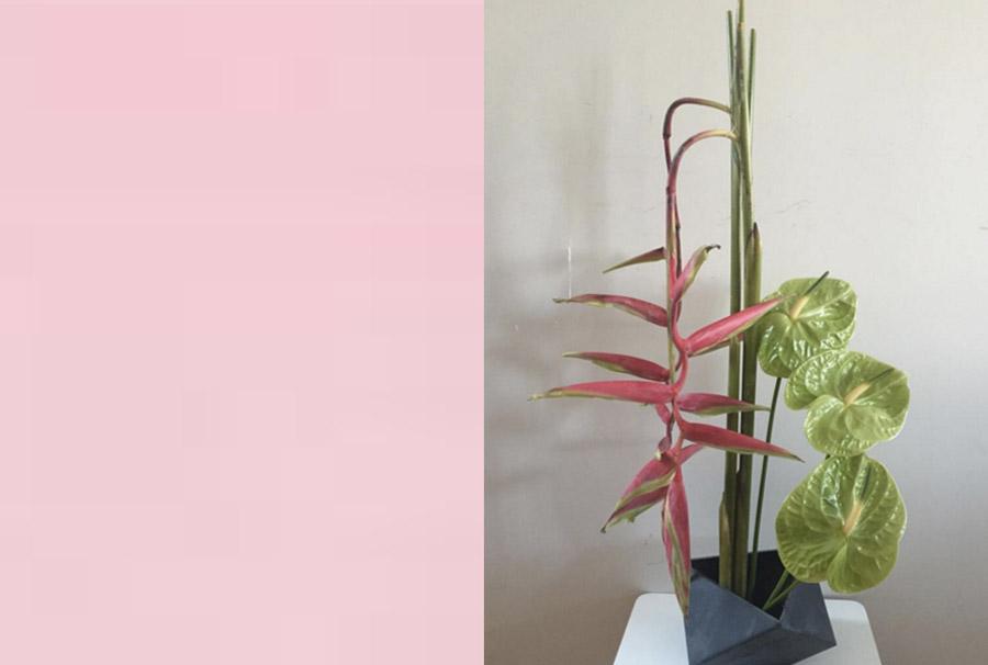 Meta Flora