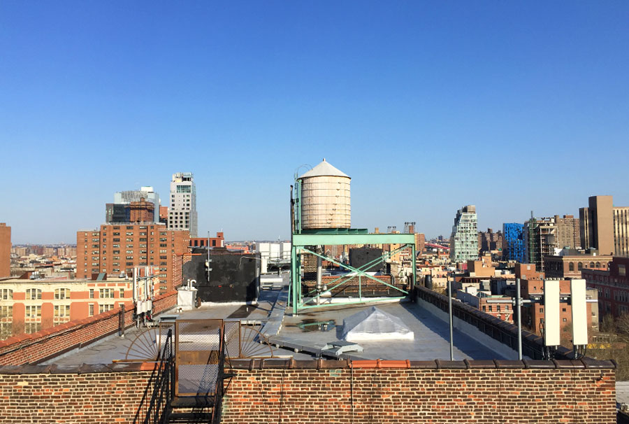 TendenciasTV-BlueNYC5