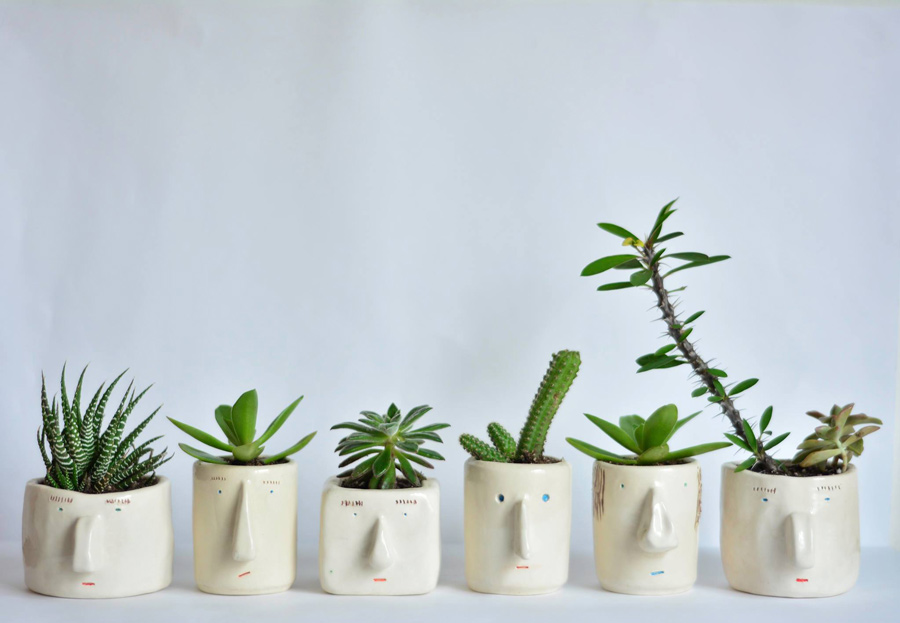 pompilio-plants-tendenciastv
