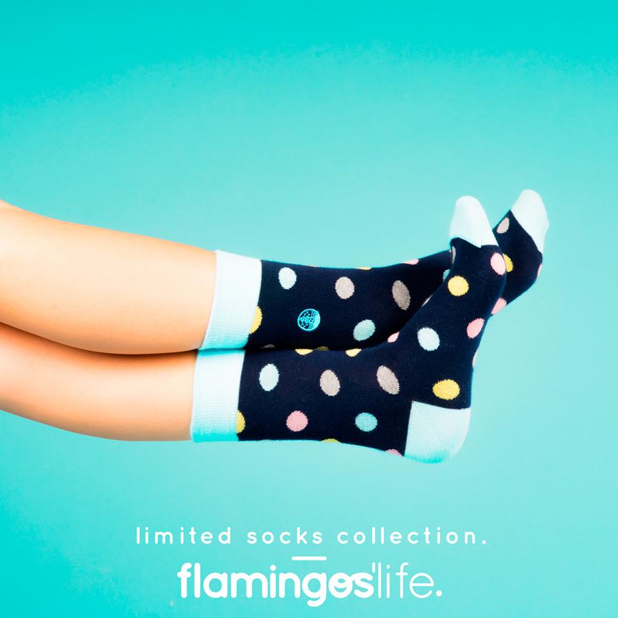 flamingos_life2