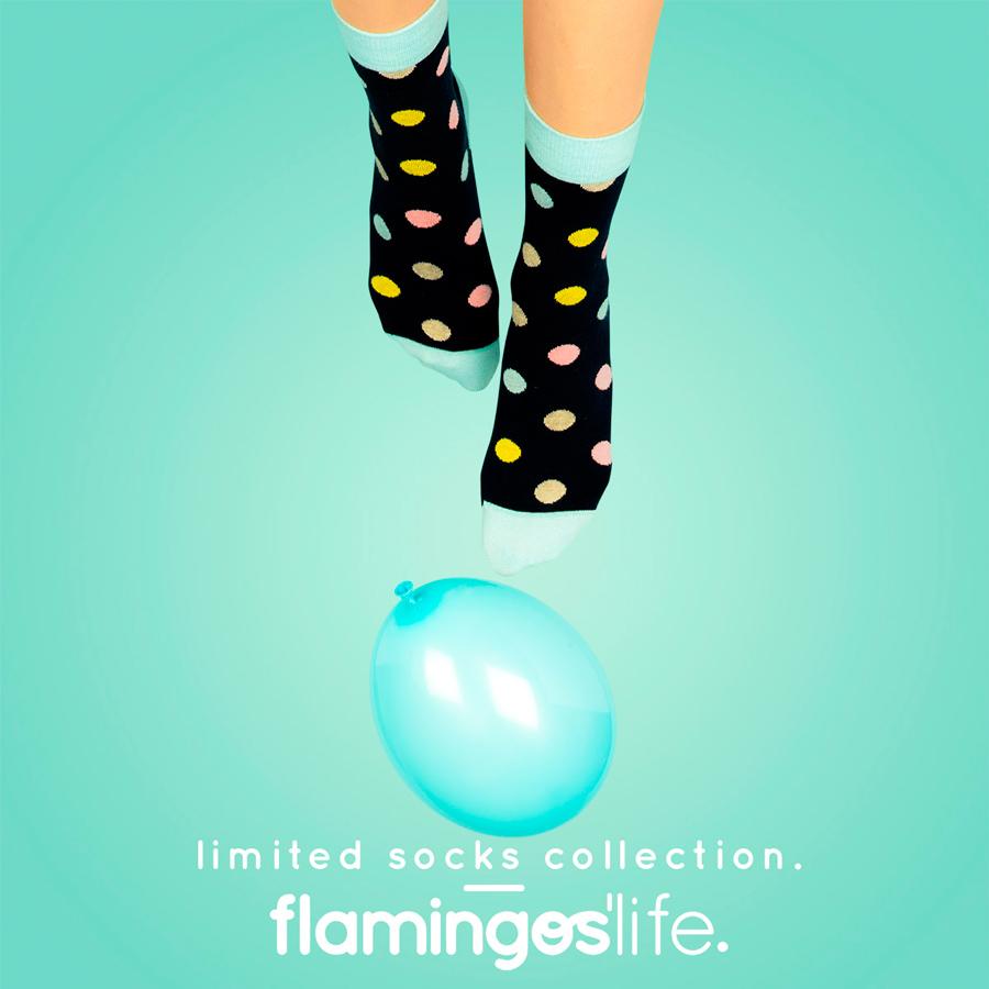 flamingos_life3