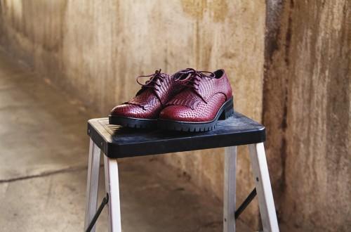 ¡Nuevo sorteo! Zapatos The Seeker