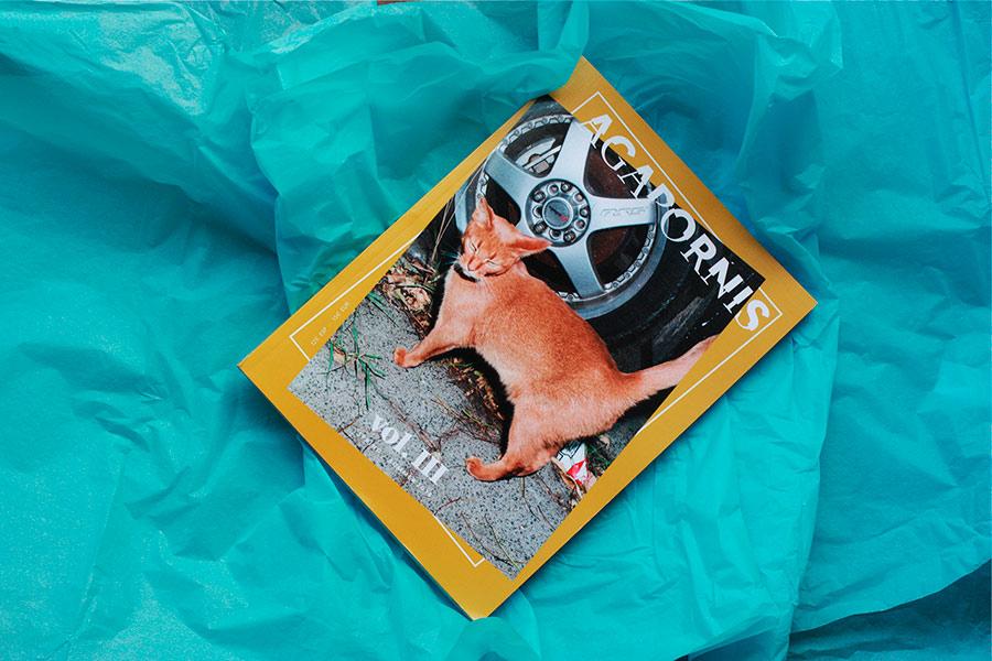 agapornis-magazine-portada-2