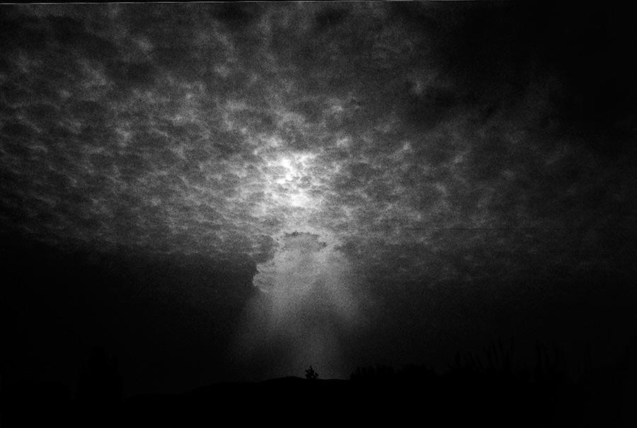 agus-prats-blanc-festival-finestra-01