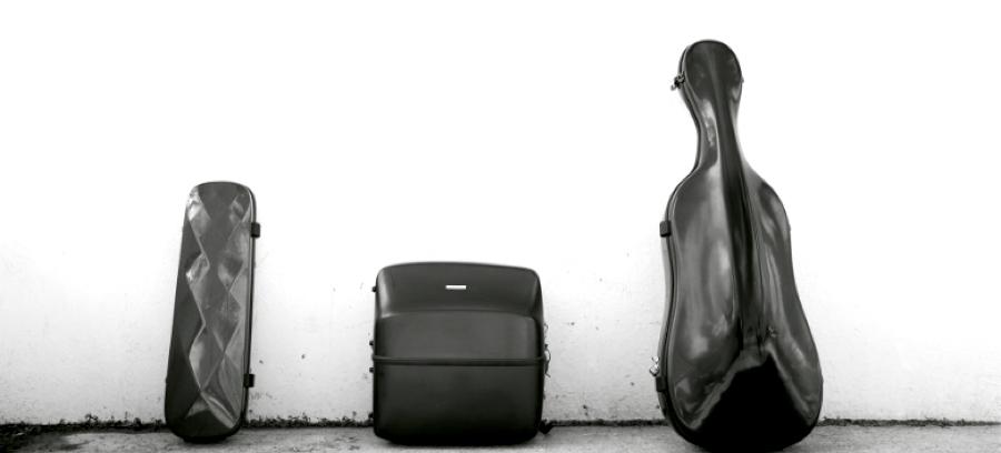 farichanges lumasuite fundas para instrumentos