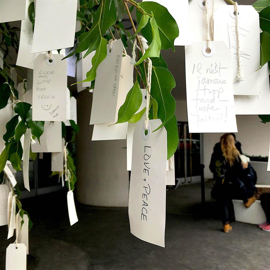 árbol peace
