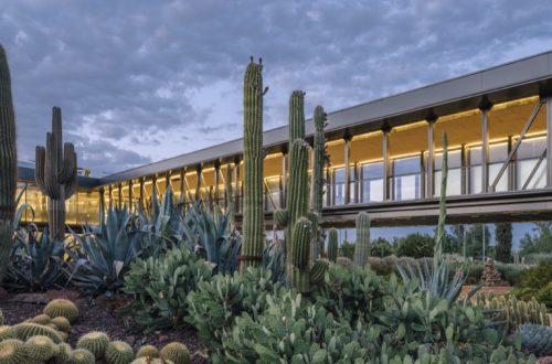 El jardín de cactus más grande de Europa