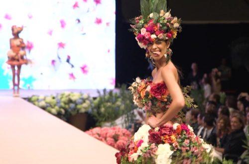 Adlib 2017 Fashion Show