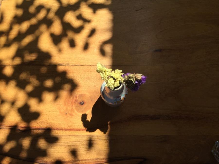 Belén las flores del tiempo