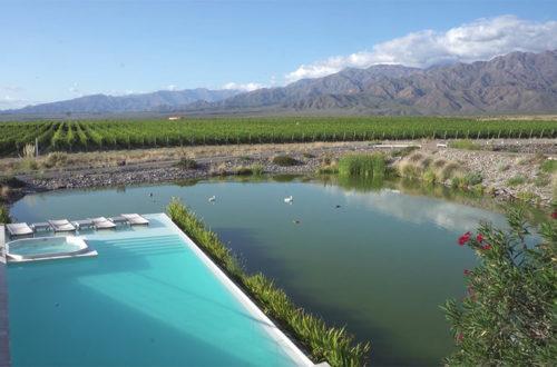 Casa de Uco, más que un hotel, una oda a la cultura del vino