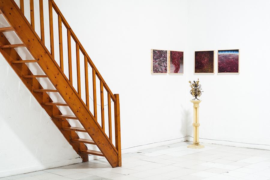 Una galería de arte sobre un club nocturno · Plataforma2